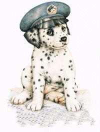 _dogs.jpg